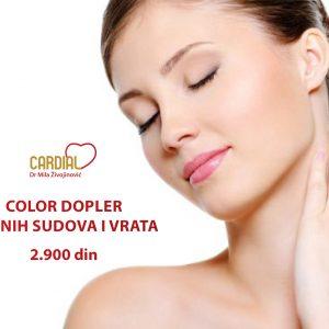 Specijalna ponuda color dopler krvnih sudova i vrata 2.900 dinara